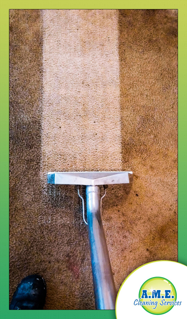 Fort Wayne Carpet Cleaning