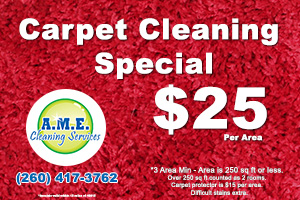 CarpetCleaningSpecialAPRIL2015_300