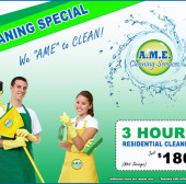 New Spring Cleaning Special